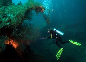 """Monster-Wrack in 50 Meter Tiefe: Die """"Titanic der Karibik"""". Foto: M. Krüger"""
