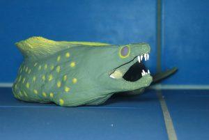 Bei ungünstig im Riff sitzenden Motiven wie Muränen und Schnecken kann Zoomen helfen. (W. Pölzer)