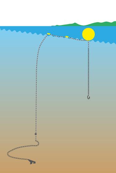 Drumlines: An einer Boje hängt ein Haken mit einem Köder. Die Drumlines werden zusätzlich zu den Kiemennetzen eingesetzt.