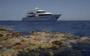 sevenseas-korallen