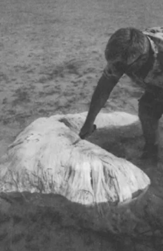 Ein Wischmop: Bei dieser Seltsamen Masse handelt es sich möglicherweise um die sterblichen Rest eines Wals.