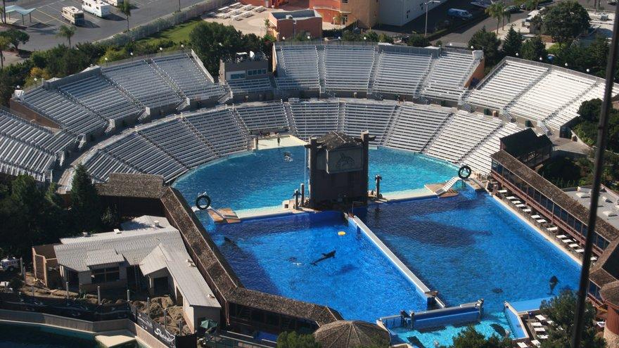 Die Aqua-Arena in Orlando, Florida: Hier fanden bisher Shows mit den intelligenten Orcas statt. Foto: WDC
