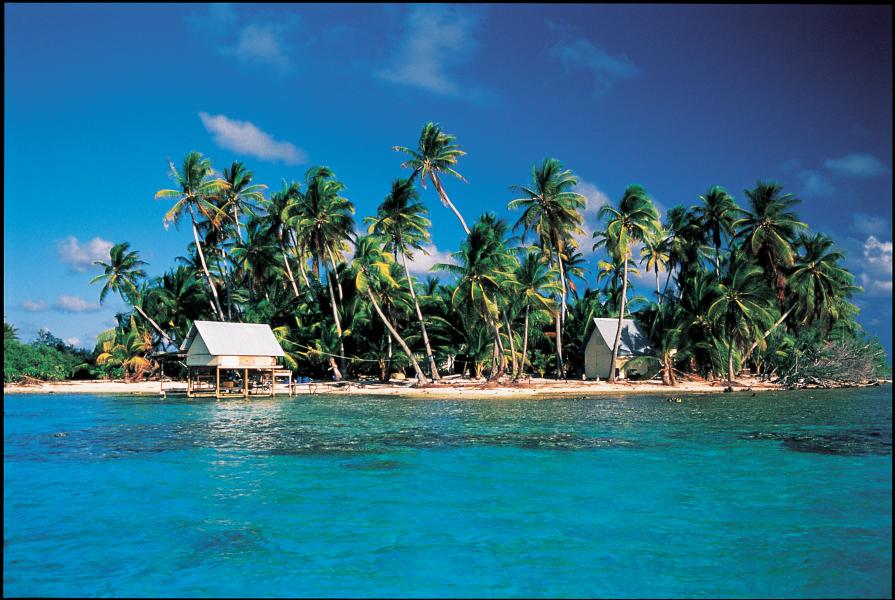 Da werden Urlaubsträume wahr: Die kleine Insel Motu bei Rangiroa. Foto: GIE Tahiti Tourisme - Philippe Bacchet