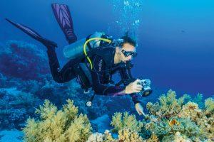 fingerzeig Umweltgerecht fotografieren: Nur mit einem Finger an der unbewachsenen Stelle des Riffs fixieren.