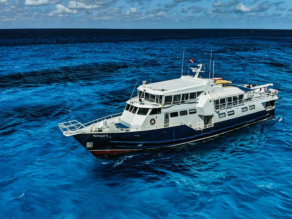 Tauchsafari durch die Bahamas