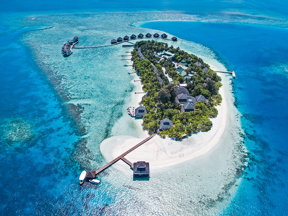Tauchen satt auf den Malediven