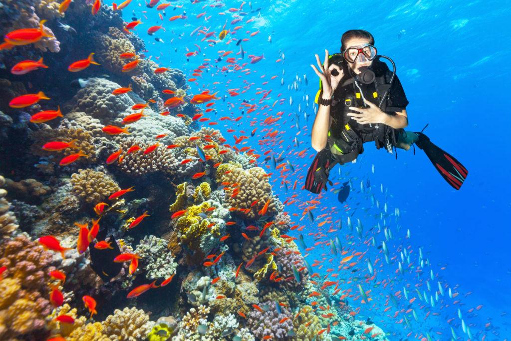 Abtauchen an herrlichen Korallenriffen. Foto: Jag cz/GettyImages