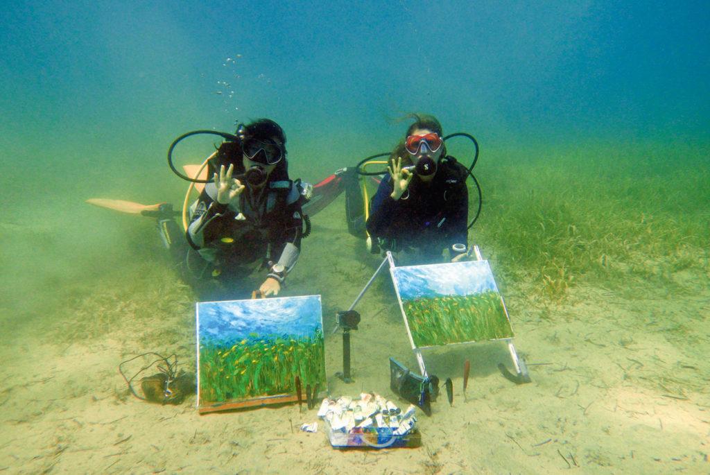 Seegraswiesen mit Jungfischen sind ein beliebtes Motiv.