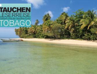 TAUCHEN-Leserreise nach Tobago
