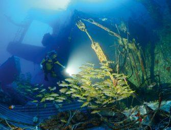 Ein tolles Hausriff und spannende Wracks – das bietet Makadi Bay in Ägypten