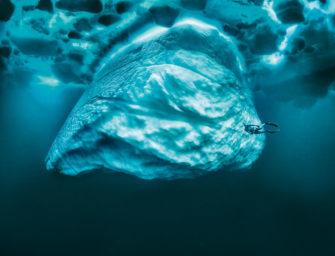 """Webinar-Premiere zu """"So machen Sie bessere Fotos unter Wasser"""" verpasst?"""
