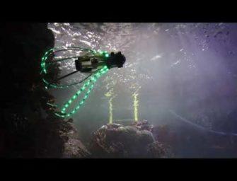 Forscher bauen Roboter-Tintenfisch