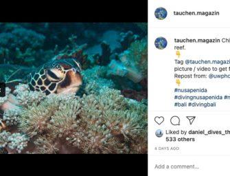 Das Instagram Foto der Woche