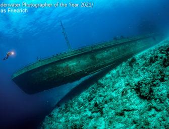 Unterwasser-Fotograf/in des Jahres 2021