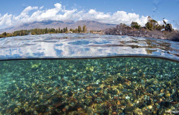 Durchblick: Das Wasser im See ist relativ nährstoffarm und deshalb erstaunlich klar.
