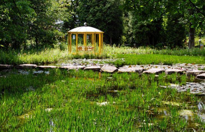 Grüne Idylle im Teutoburger Land: Der NaturaGart und seine riesige Folienteichlandschaft. Foto: Udo Kefrig