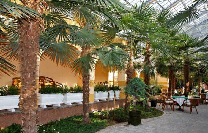 Zum Relaxen zwischen den Oberflächenpausen und für nichttauchende Gäste ideal ist der Pavillon. Foto: Udo Kefrig