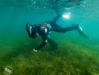 Offener Brief für mehr Ozean-Schutz