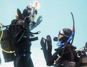 1. Unterwasserhochzeit in West-Australien