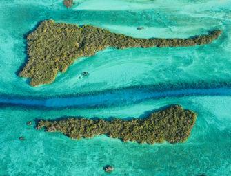 Galerie im Juli: Welttag der Ozeane